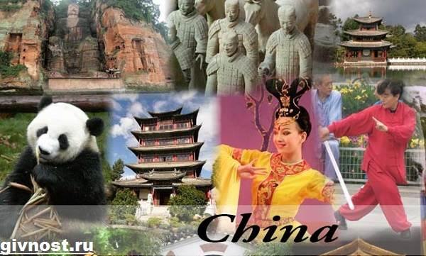 Животные-Китая-Описание-названия-и-виды-животных-Китая-2