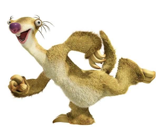 Ленивец-животное-Образ-жизни-и-среда-обитания-ленивца-10