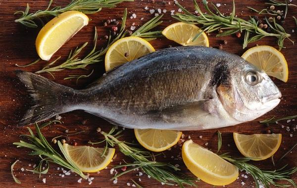 Дорадо-рыба-Описание-особенности-виды-образ-жизни-и-среда-обитания-дорадо-10