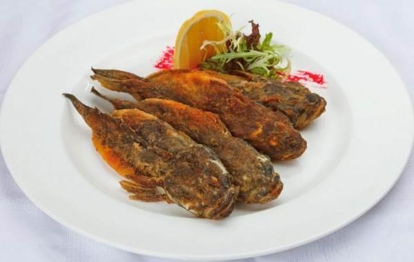 Ротан-рыба-Описание-особенности-виды-образ-жизни-и-среда-обитания-ротана-14