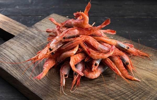 Углохвостая-креветка-Описание-особенности-виды-образ-жизни-и-среда-обитания-креветки-3