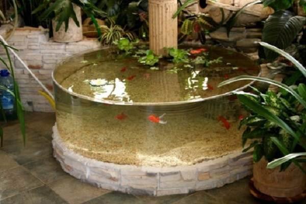 Плюсы-и-минусы-аквариума-дома-и-каких-видов-они-бывают-6