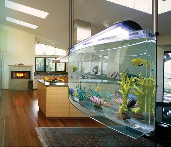 Плюсы-и-минусы-аквариума-дома-и-каких-видов-они-бывают-7